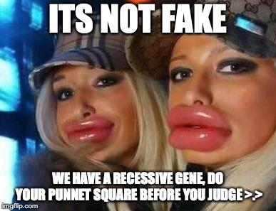 The Wonderful World Of Memes Alexandra B Cmn 696 05